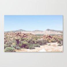 Joshua Tree, No. 2 Canvas Print