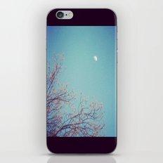 Nightly Bliss iPhone & iPod Skin