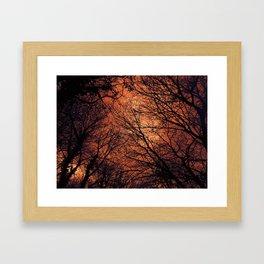 The Enchanted Forest 2 Framed Art Print