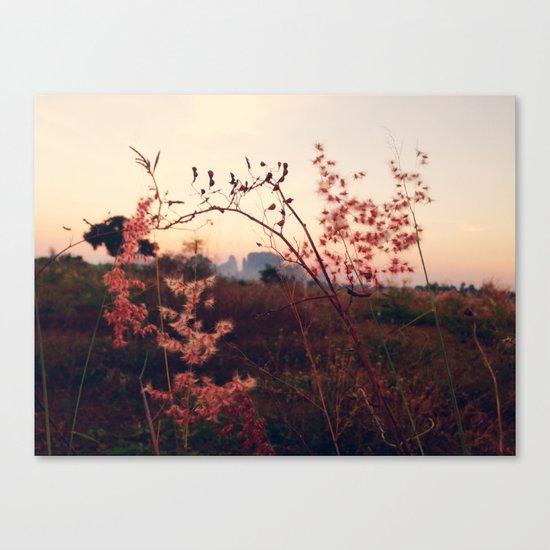 Desert Sakura Canvas Print