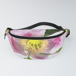 Papaver Somniferum Opium Poppy Fanny Pack