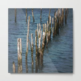 Wooden stakes Metal Print