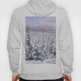 Snow time. Sunset at the mountains Hoody