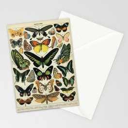 Adolphe Millot Butterfly Vintage Scientific Illustration Old Le Larousse pour tous llustration Stationery Cards
