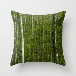 Nature photography. Irati Forest, Navarra. Spain. Throw Pillow