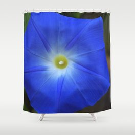 Blue, Heavenly Blue morning glory Shower Curtain