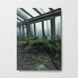 Berlin Greenhouse Metal Print