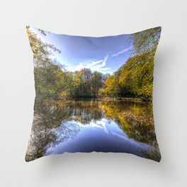 The Silent Pond Throw Pillow