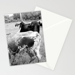 """Longhorns Dancing"" Stationery Cards"