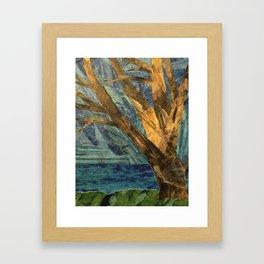 That Big Tree by the Lake Framed Art Print