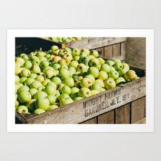 Bushel of Apples Art Print