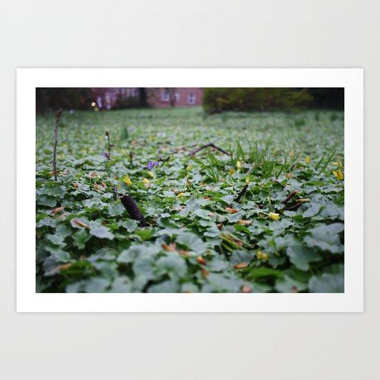 Meadow no.1 Art Print