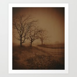 Three Dark Trees Art Print