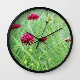 Beautiful Magenta Flower in the Meadow Wall Clock