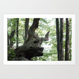 The Forest is Present Art Print