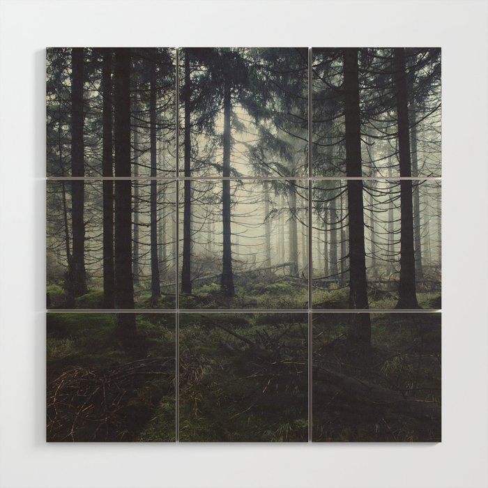 Through The Trees Wood Wall Art