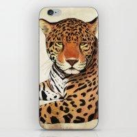jaguar iPhone & iPod Skins featuring Jaguar by Savousepate