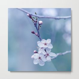 hope springs eternal Metal Print