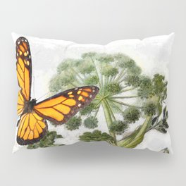 Angelica Herb Botanical Pillow Sham