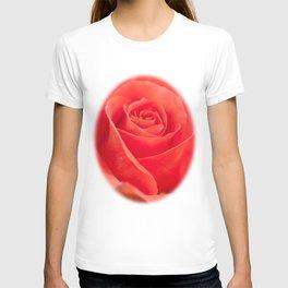 Pretty peach T-shirt
