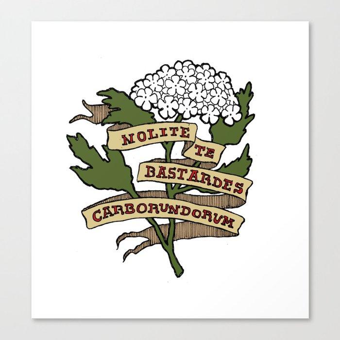 Handmaid's Tale - NOLITE TE BASTARDES CARBORUNDORUM (color) Canvas Print