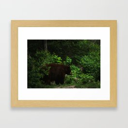 bear II Framed Art Print