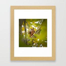 Trees are Home Framed Art Print