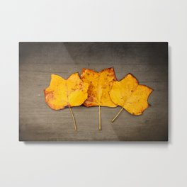 Tulip Poplar Leaves Metal Print