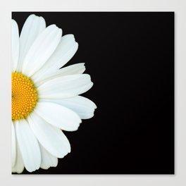 Hello Daisy - White Flower Black Background #decor #society6 #buyart Canvas Print