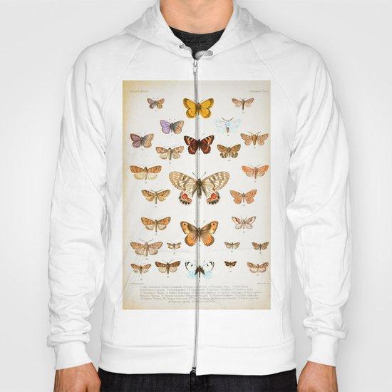Vintage Butterflies  Hoody