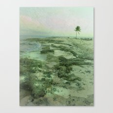 Tip of Paradise Canvas Print