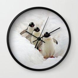 Gentoo Penguins Walking to the Sea Wall Clock