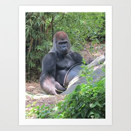 Gorilla Says Art Print