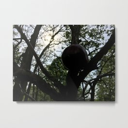 Apple and Eve(ning) Metal Print