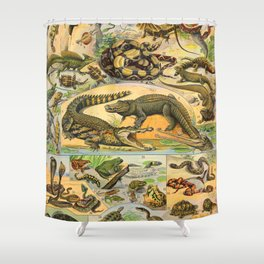Reptiles Chart Nature Vintage Snake Turtle Alligator Shower Curtain
