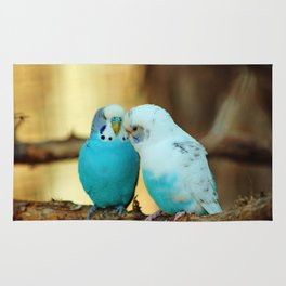 Lovely Pair Of Budgies Rug