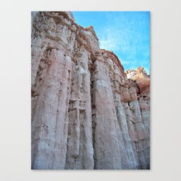 Pillars of Stone Canvas Print