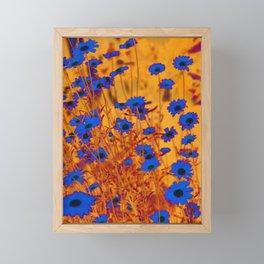 Luminous Daisies Framed Mini Art Print