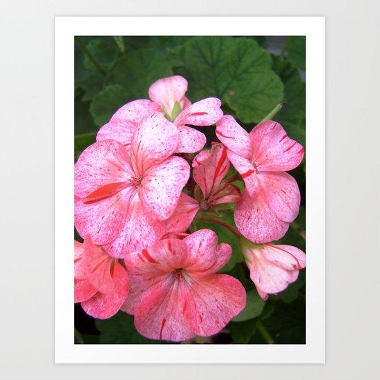 flora VII Art Print