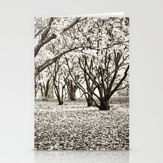Magnolias in Black & White Stationery Cards