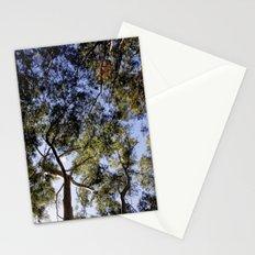 Eucalyptus Tree Canopy Stationery Cards
