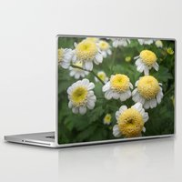 daisies Laptop & iPad Skins featuring Daisies by Vitta