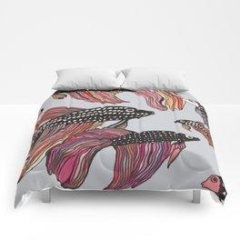 Betta Comforters