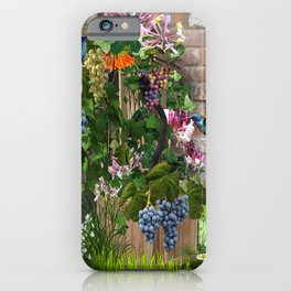 Climbing Grapevines & Honeysuckles Flowers and Hummingbirds iPhone Case