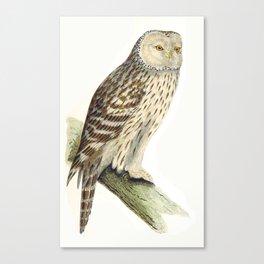Vintage Ural Owl Canvas Print