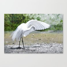 I Know its Here Somewhere  Canvas Print