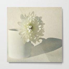 Chrysanthemum Shadow. Metal Print