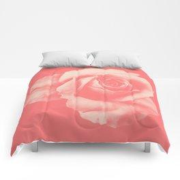 CALESCO Comforters