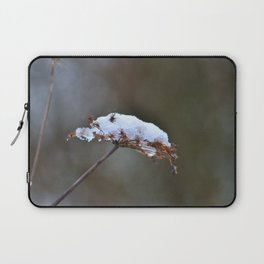 It's Freezing Laptop Sleeve