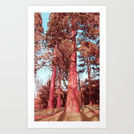 The Giants Art Print
